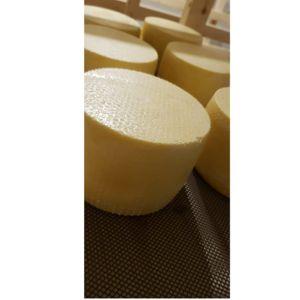 Сыр Качота