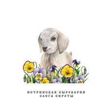 """Постер """"Козочка в цветах"""""""