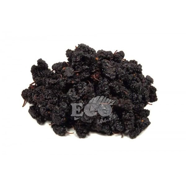 Тутовник чёрный (шелковица)