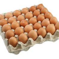 Яйцо отборное куриное